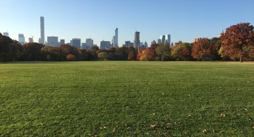 Nueva York quiere marcar el regreso de los shows con un increíble concierto en el Central Park para 60 mil personas